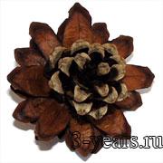 цветок из шишки