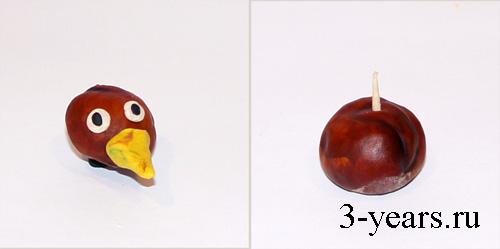 мастер класс птичка из каштана, фото4